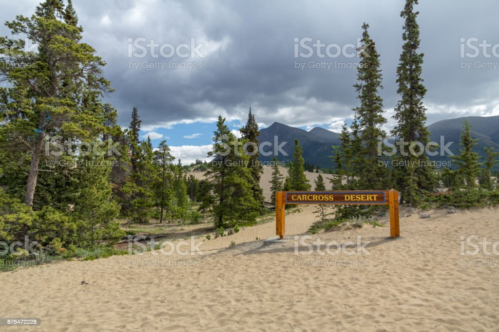 Carcross Desert - often considered the smallest desert in the world stock photo