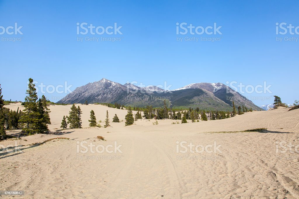Carcross Desert stock photo