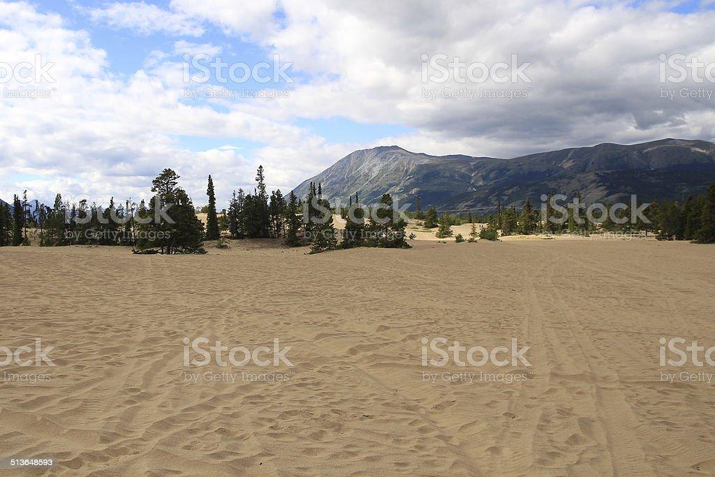 Carcross Desert stock photo