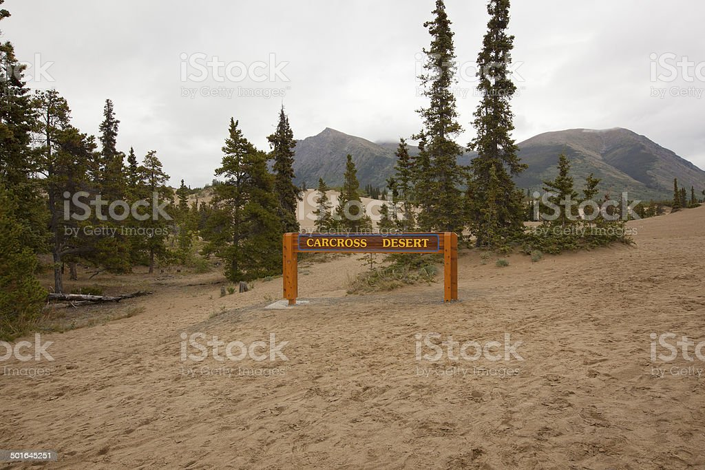 carcross desert yukon canada stock photo
