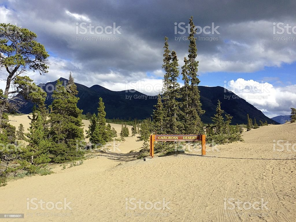Carcross Desert, Yukon Territory, Canada stock photo