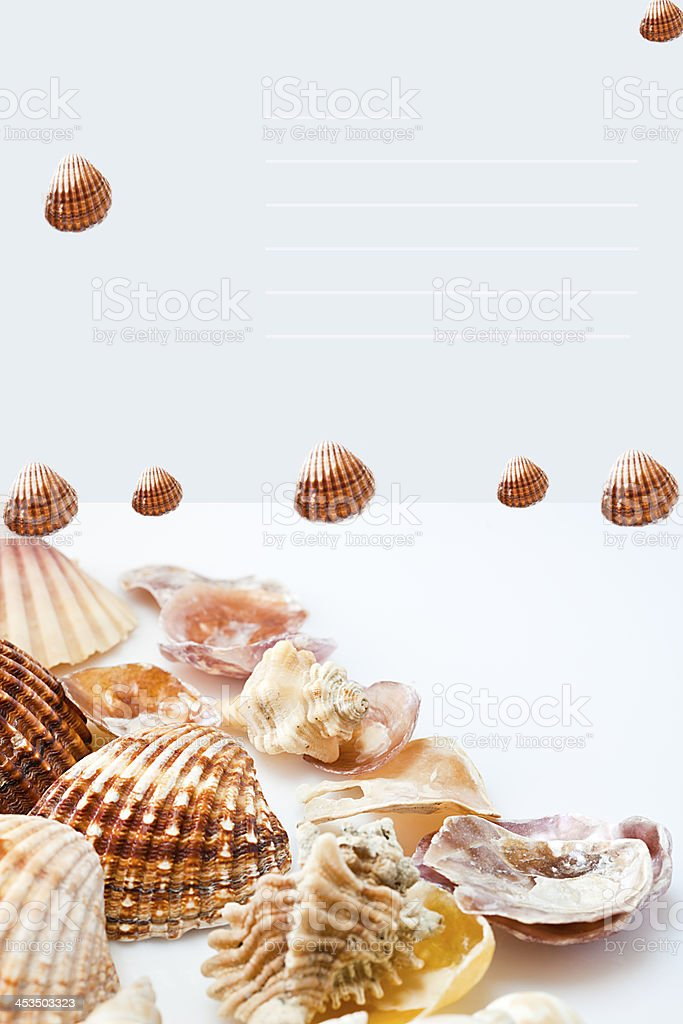 Card decorated with shells. royalty-free stock photo