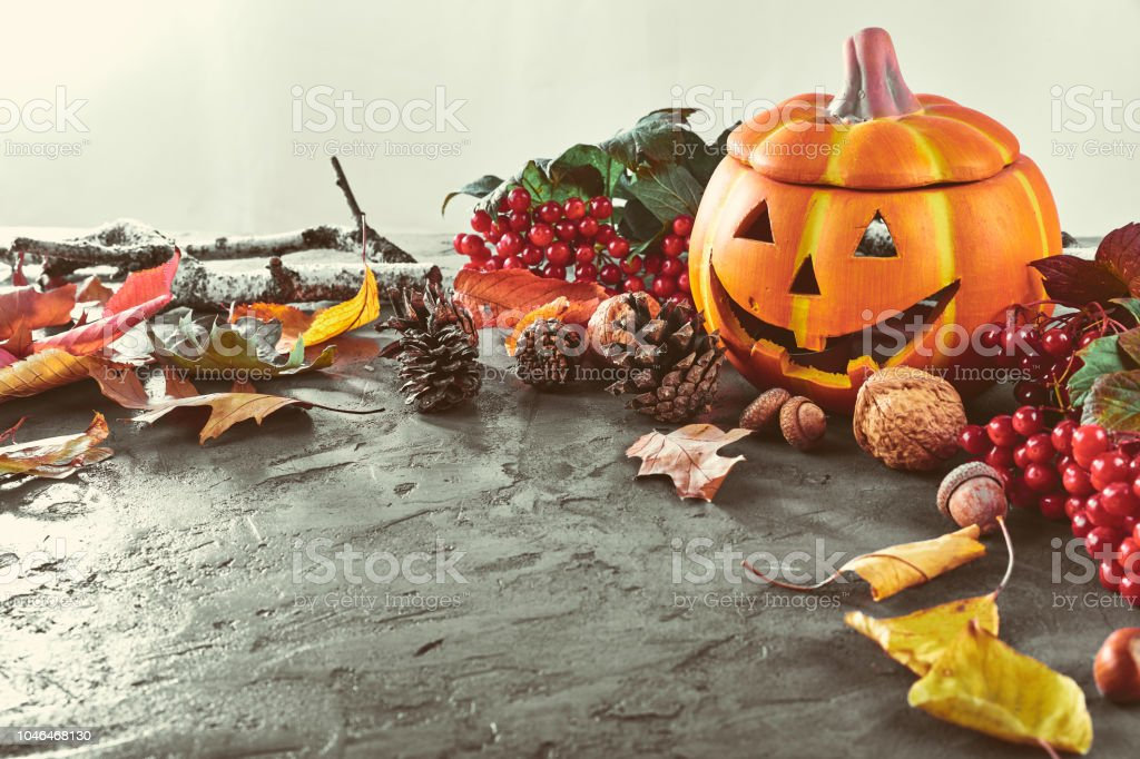 Card for holiday Halloween top view. Dry bright leaf and branch on...
