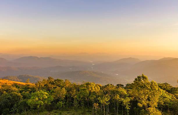 Cardamom Hills and Periyar wildlife sanctuary, Kerala, India. stock photo