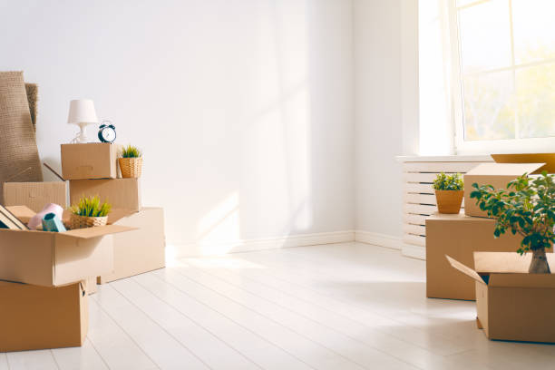 Cardboard boxes in room stock photo