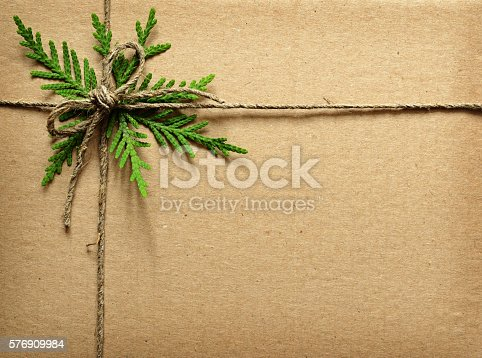 istock Cardboard tied with green twigs and rope. 576909984