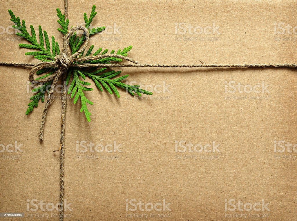 Cardboard tied with green twigs and rope. stock photo