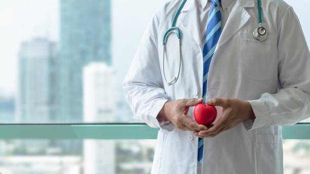 Cardiologist doctor holding red heart with professional medical care in clinic office with hospital city building background stock photo