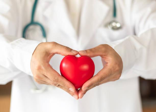 hart-en vaatziekten arts of cardioloog bedrijf rood hart in kliniek of ziekenhuis examen kamer bureau voor mvo professionele medische dienst, cardiologie gezondheidszorg en wereld hartgezondheid dag concept - sneakpreview stockfoto's en -beelden
