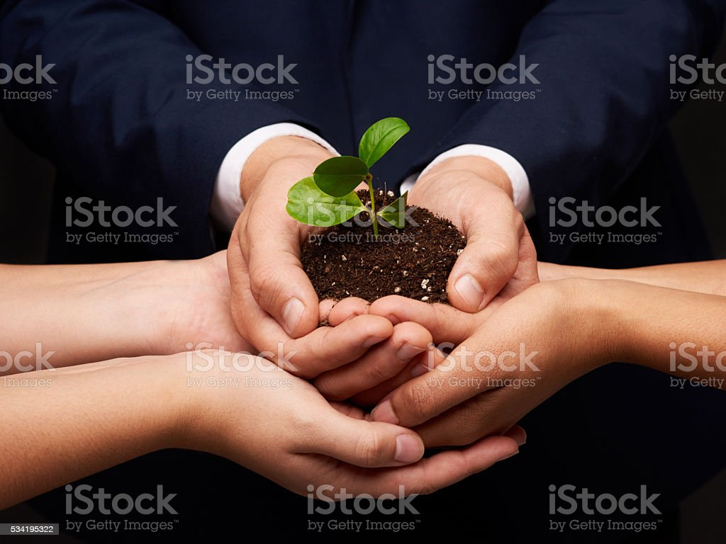Care and conserve Shot of a group of hands holding a pile of soil with a plant in Adult Stock Photo