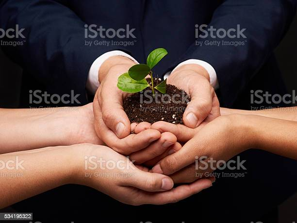Care And Conserve Stock Photo - Download Image Now