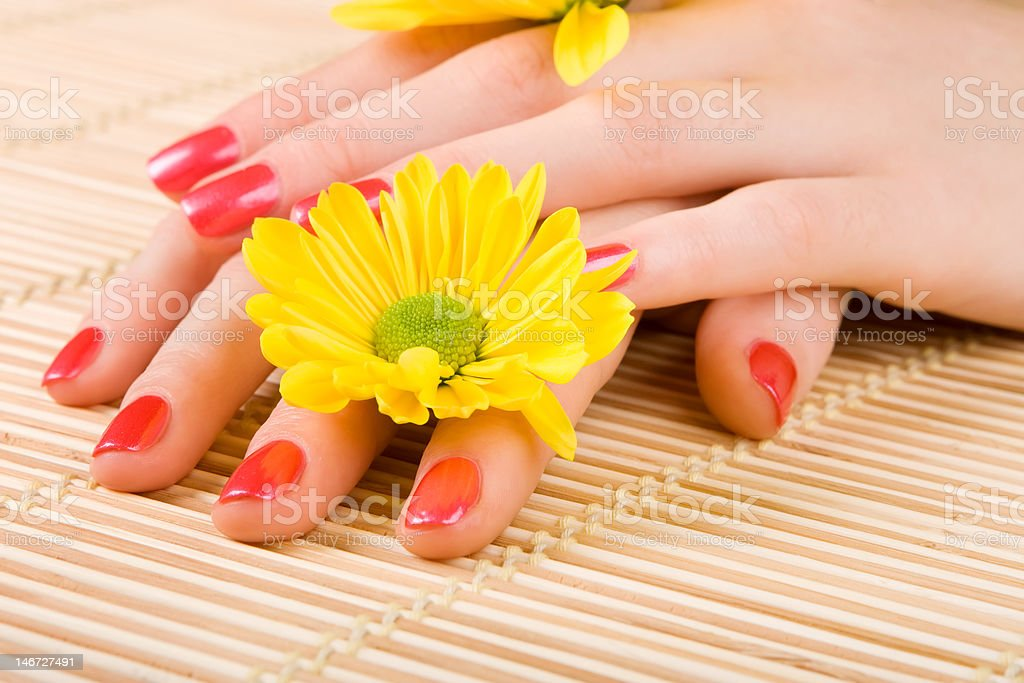 care for beautiful woman hands royalty-free stock photo