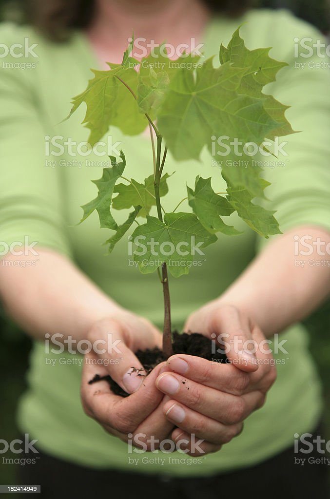 Care for the environment royalty-free stock photo