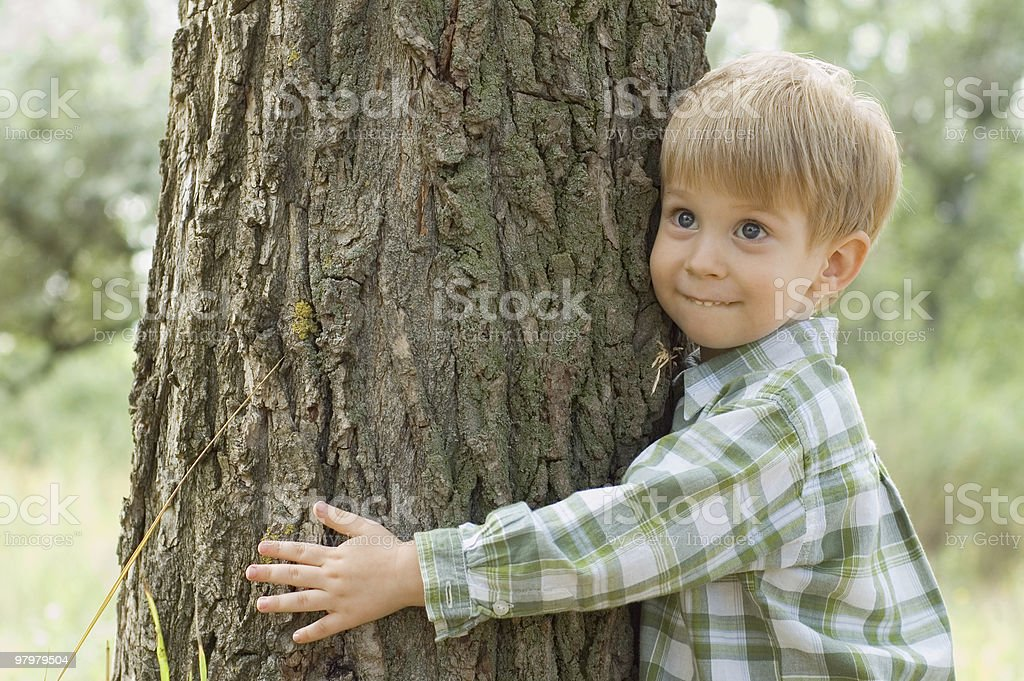 care of nature - little boy embrace a tree royalty-free stock photo