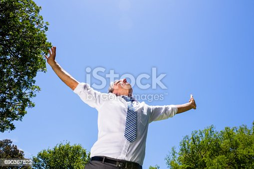 istock Carefree businessman with arms outstretched 690367822