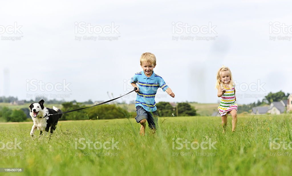 Carefree children happy with pet dog stock photo