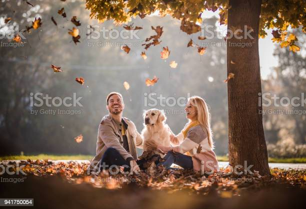 Carefree couple and their dog among autumn leaves in the park picture id941750054?b=1&k=6&m=941750054&s=612x612&h=quxtia1la4sjfrxznwmozidlwfbbnolfikmmv6ryini=