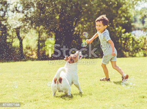 istock Carefree kid and pet dog playing with flying soap bubbles at sunny summer day 874857168