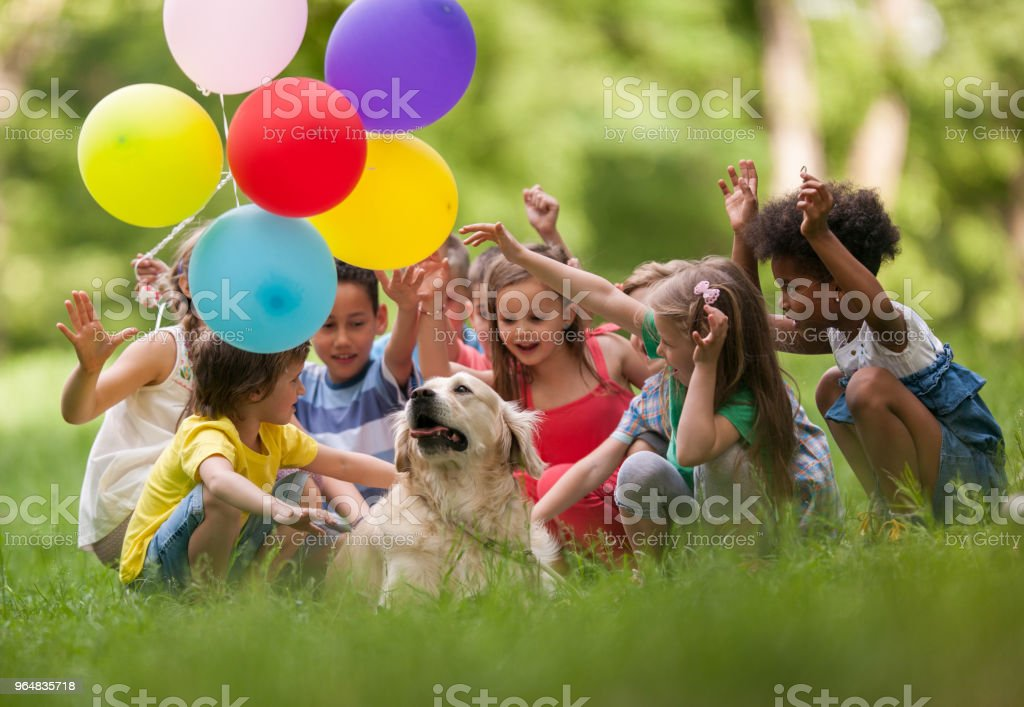 Carefree kids with balloons enjoying with a dog in grass. royalty-free stock photo