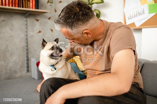 Carefree mid adult man sitting on sofa, relaxing, and cuddle with his dog during home isolation