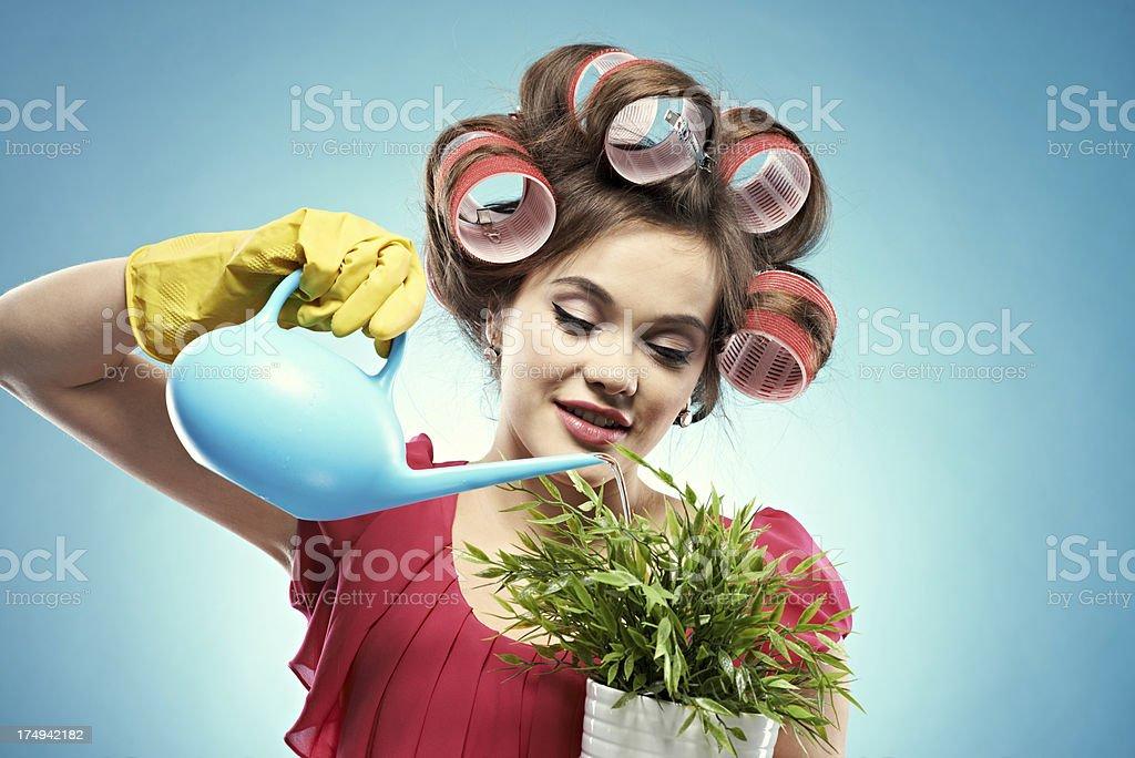 Careful housewife royalty-free stock photo