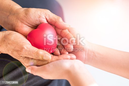 istock Caregiver, carer hand holding elder hand woman in hospice care. Philanthropy kindness to disabled concept.Public Service Recognition Week 1129620899