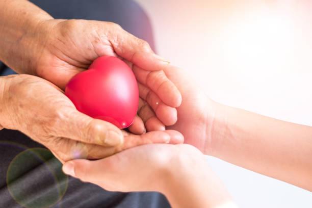 caregiver, carer hand holding elder hand woman in hospice care. philanthropy kindness to disabled concept.public service recognition week - voluntário imagens e fotografias de stock