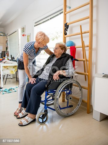 912333752 istock photo Caregiver Helping Senior Woman With Phisyotherapy Exercise 871901586