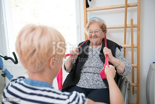 912333752 istock photo Caregiver Helping Senior Woman With Phisyotherapy Exercise 871901592