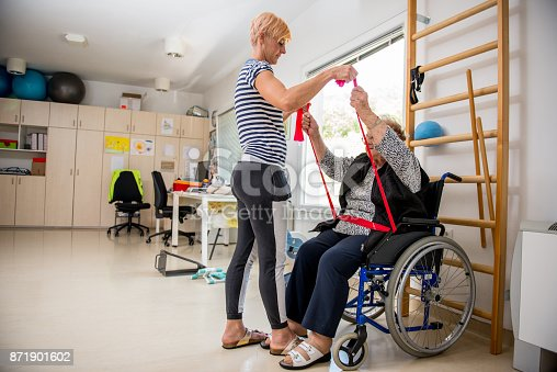 912333752 istock photo Caregiver Helping Senior Woman With Phisyotherapy Exercise 871901602