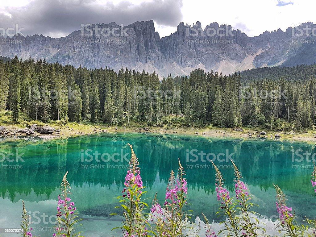 Carezza Lake  - Trentino Alto Adige - Italy stock photo