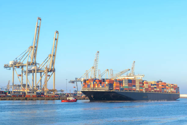 cargo container ship at a container terminal in rotterdam port - rotterdam foto e immagini stock