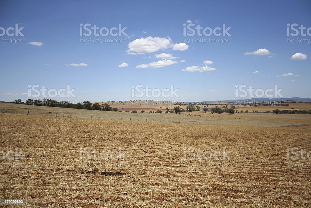 Cargo Fields in Drought royalty-free stock photo