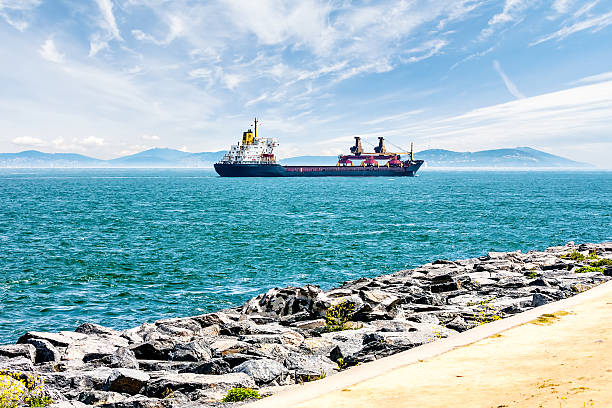 Cargo ship sails on a background of blue mountains