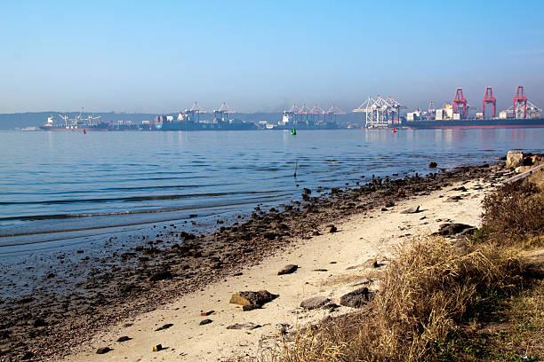 Containerschiffe bei Ebbe Hafen von Durban – Foto