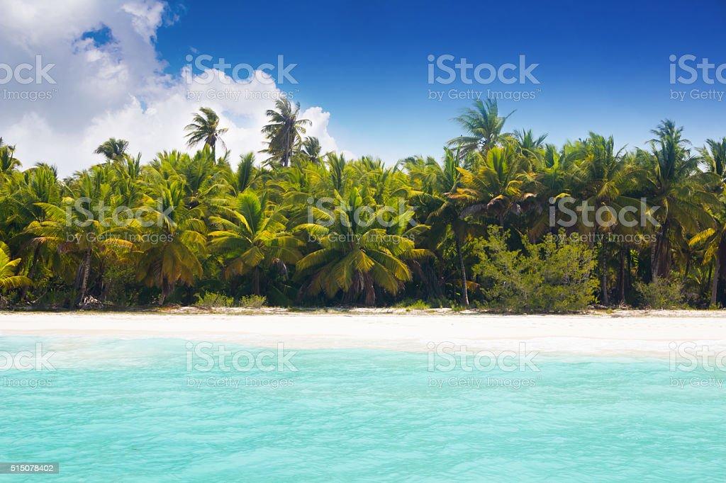 Caribbean beach at blue lagoon stock photo