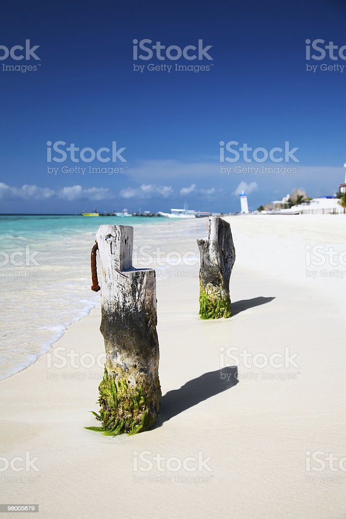 caribbean beach at Puerto Morelos near Cancun, Mexico royalty-free stock photo