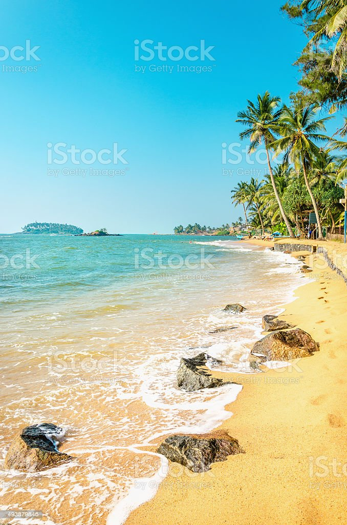 Caribbean beach full of palm trees against azure sea stock photo