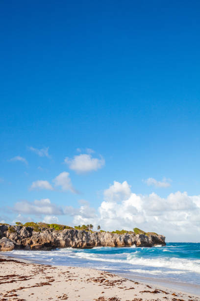Caribbean beach - Harrismith, Barbados stock photo