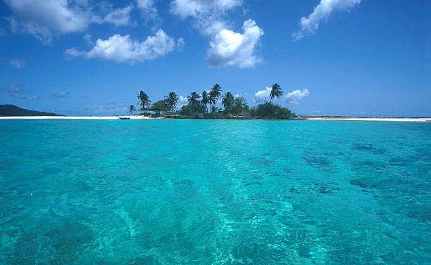 karibik strand island - st. vincent und die grenadinen stock-fotos und bilder