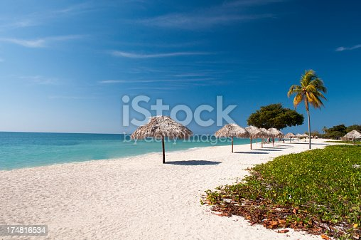 Beautiful Deserted beach with palm trees and sand.
