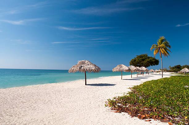 caribbean beach - jamaica stock photos and pictures
