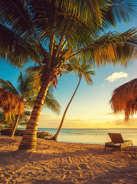 caribbean beach - caribbean stock pictures, royalty-free photos & images