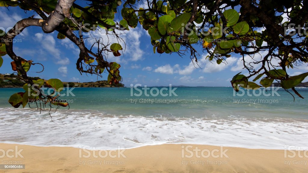 A Caribbean Beach stock photo