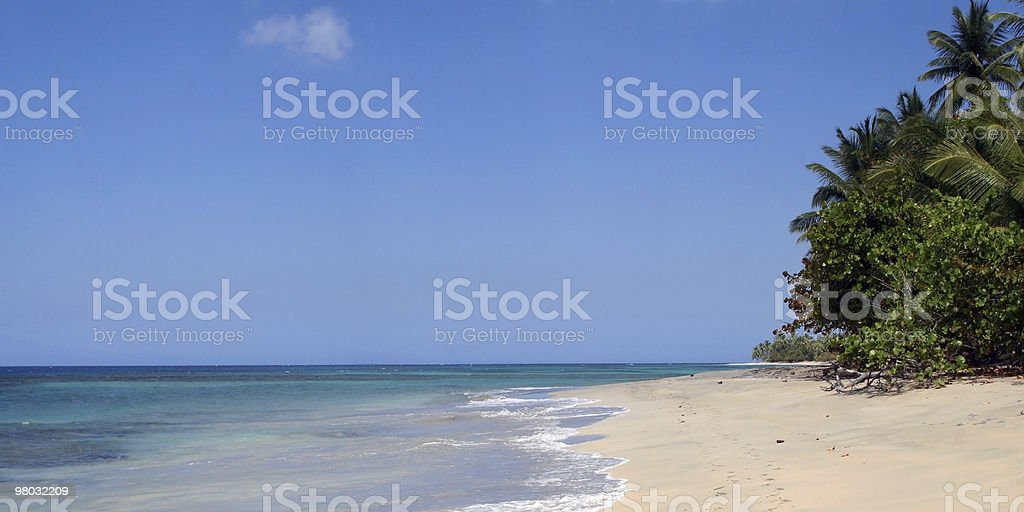 Caribbean Beach royalty-free stock photo