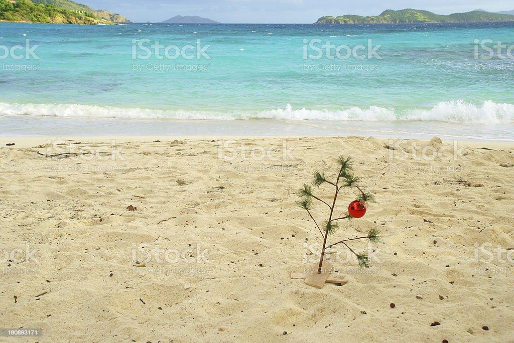 Caribbean Christmas Tree royalty-free stock photo