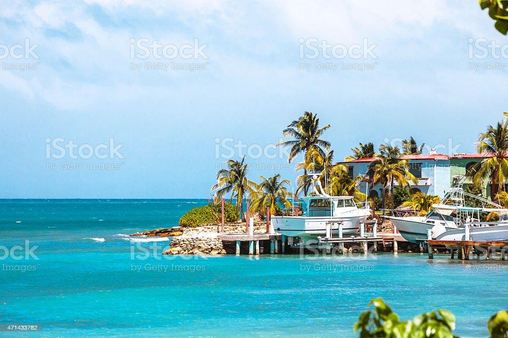Caribbean coast. Antigua & Barbuda. stock photo