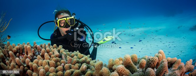 View of a female diver and the stunning Caribbean coral reef in Little Cayman, Cayman Islands