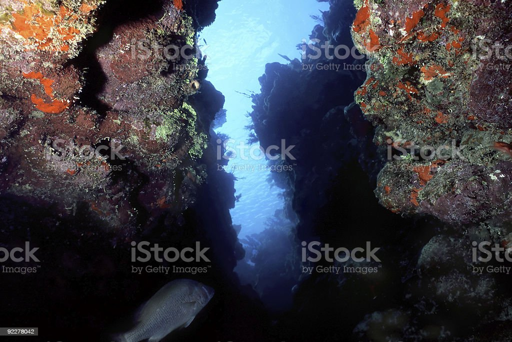Caribbean crevice royalty-free stock photo