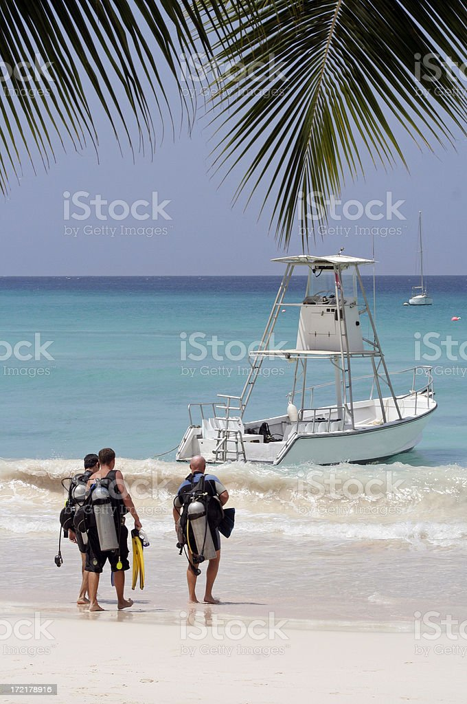 Caribbean Diving royalty-free stock photo